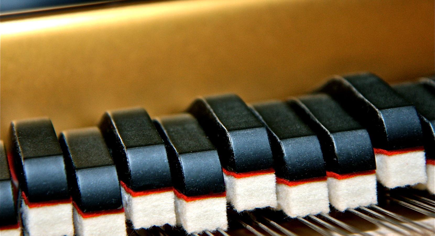 Grand Piano Passion™ | Chopin Waltz in B Minor Amplified - Grand