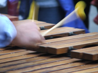 Playing_xylophone