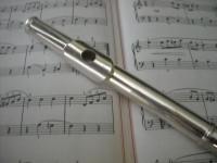 Adult_flute_lessons_Lesley_Leben