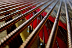 Frank_Schramm_piano_strings