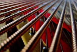 Frank_Schramm_piano_strings