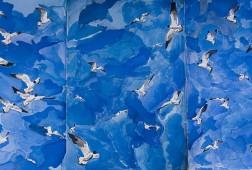 Seagulls_Annika_Connor