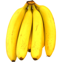 Bunch_of_bananas